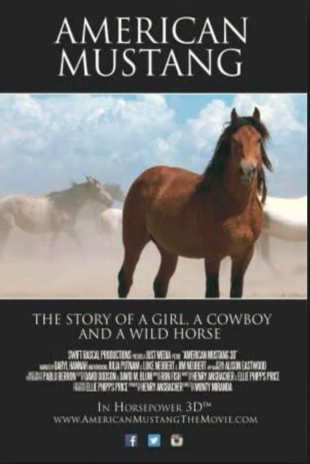 Amerikanische Mustangs in Gefahr! Kino-Dokumentation neu in den USA!
