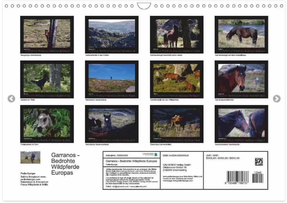 """Wildpferde-Kalender """"Garranos- Bedrohte Wildpferde Europas"""" jetzt erhältlich"""
