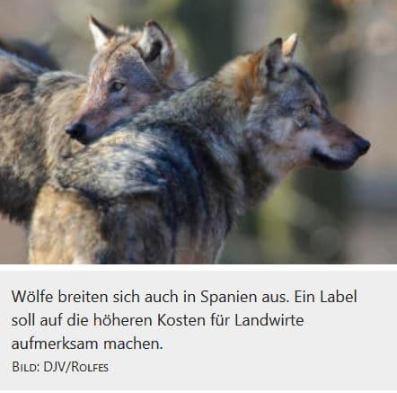 """Spanien startet Label """"Beweidung mit Wolf"""""""