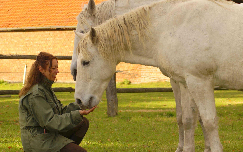 Persönliches Interview vom Reiseblog Last Paradise mit Sabine Bengtsson zur Gründung von Perlenfänger
