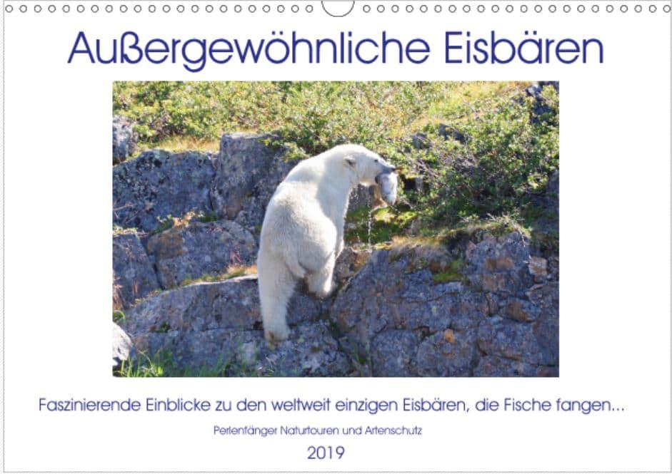 Eisbären Kalender und mehr
