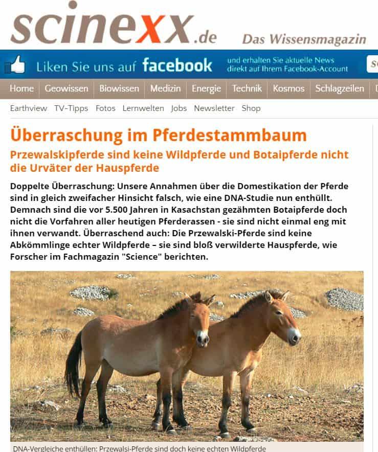 Przewalskipferde sind keine Wildpferde
