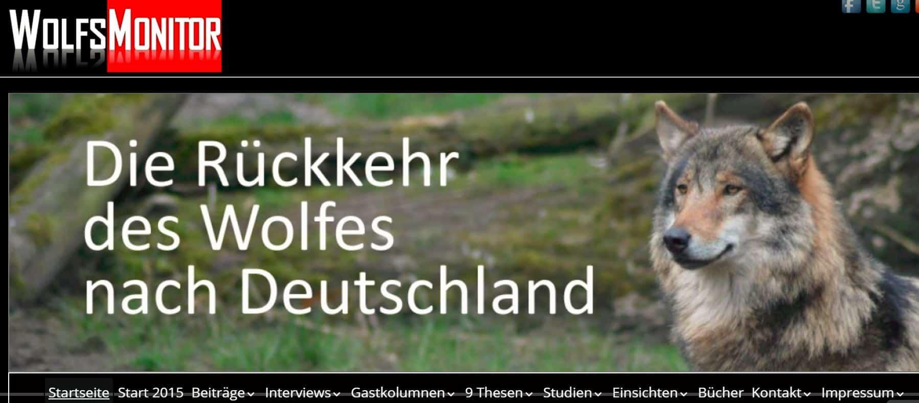"""Interview """"3 Antworten von Sabine Bengtsson"""" mit Wolfsmonitor"""