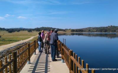 Extremadura in Spanien – FIO