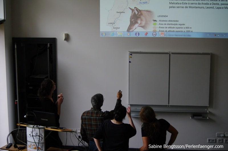 Wölfe & Wildpferde in Portugal -Vortrag im Leibniz Institut für Zoo-, und Wildtierforschung in Berlin
