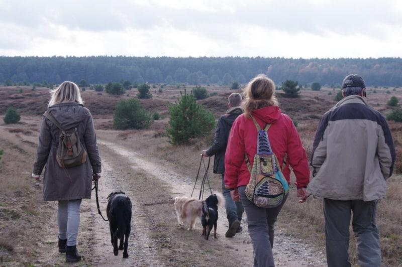 Wolfsexperten zu Besuch in Deutschland: Pedro und Anbela aus Portugal im hiesigen Wolfsterritorium und zum Vortrag im IZW in Berlin