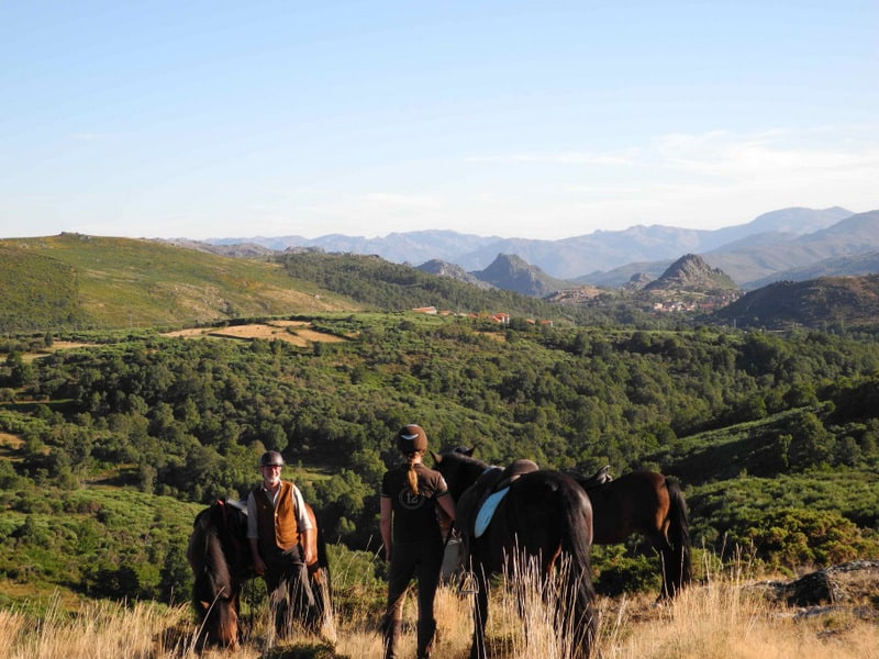 Manchmal dauern Träume etwas länger – Reiten lernen für Erwachsene Portugal