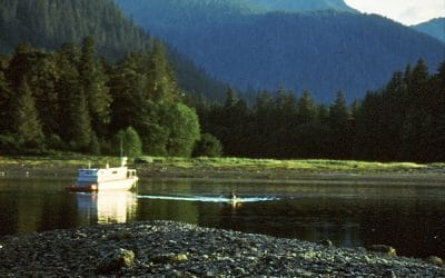 Alaska – eine Tour in die Wildnis